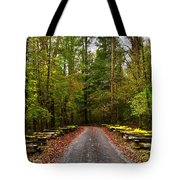 Great Smoky Mountains Tote Bag by Janice Spivey