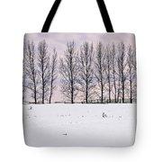 Rural Winter Landscape Tote Bag by Elena Elisseeva