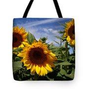 3 Sunflowers Tote Bag by Kerri Mortenson
