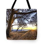 The Reach Tote Bag by Debra and Dave Vanderlaan