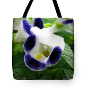Torenia From The Duchess Mix Tote Bag by J McCombie