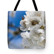 White Cherry Blossoms Blooming In The Springtime Tote Bag by Nila Newsom
