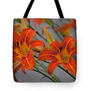Day Lilly Tote Bag by William Norton