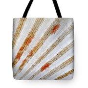Seashell Surface Tote Bag by Elena Elisseeva