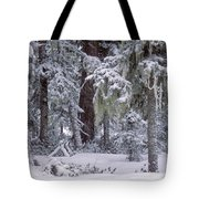 Sikhote Alin Tote Bag by Anonymous
