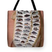 50 Fish from American Waters Tote Bag by Nomad Art And  Design