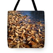 Ussurian Taiga Autumn Tote Bag by Anonymous