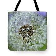 8233 Tote Bag by Marty Koch
