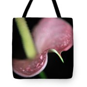 A Curvy Lady Tote Bag by Laurie Search