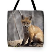 A Cute Kit Fox Portrait 1 Tote Bag by Thomas Young
