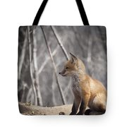 A Cute Kit Fox Portrait 2 Tote Bag by Thomas Young
