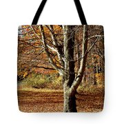 A Fall Tree In New England Tote Bag by Mike McCool