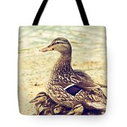A Family Affair Tote Bag by Karol  Livote