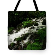 A Fern On An Isalnd  On Wahkeena Creek Tote Bag by Jeff Swan