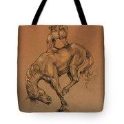 A Fine Balance Tote Bag by Derrick Higgins