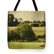 A French Country Scene Tote Bag by Georgia Fowler