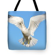 A Higher Gull Tote Bag by Fraida Gutovich