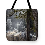 A North Woods Fairy Tale Tote Bag by Mary Amerman