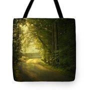 A Path To The Light Tote Bag by Evelina Kremsdorf