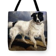 A Portrait Of Neptune Tote Bag by Sir Edwin Landseer