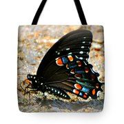 A Real Beauty Tote Bag by Marty Koch