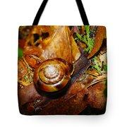 A Slow Snail Tote Bag by Jeff Swan