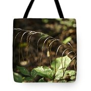 A Speck In God's Eye Yet Precious In His Sight Tote Bag by Mother Nature