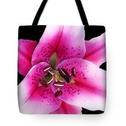 A Star Is Born - Pink Stargazer Lily by Sharon Cummings Tote Bag by Sharon Cummings