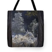 A Twisted Fairy Tale Tote Bag by Mary Amerman
