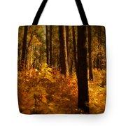 A Walk Through The Woods  Tote Bag by Saija  Lehtonen