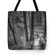 A Walk Through The Woods Tote Bag by Scott Norris