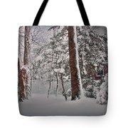 A Winter Wonderland Tote Bag by Mikki Cucuzzo