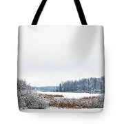 A Winters Dream Tote Bag by Aimee L Maher Photography and Art Visit ALMGallerydotcom