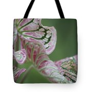 Abstract by Nature Tote Bag by Nola Lee Kelsey