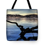 Adrift Reflection Tote Bag by Cheryl Young