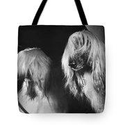 Afghan Hound Tote Bag by ME Browning