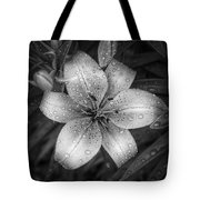 After The Rain Tote Bag by Scott Norris