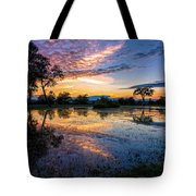 After The Rains Tote Bag by Mary Amerman