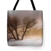 Against The Current Tote Bag by Mary Amerman