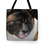 Akita - A Dog's Tale Tote Bag by Christine Till