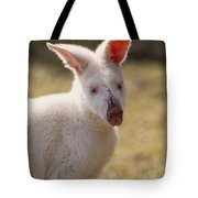 Albino Wallaby Tote Bag by Art Wolfe
