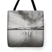 All Together Now Tote Bag by Laurie Search