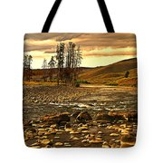 Along The Larmar River Tote Bag by Marty Koch