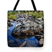 Alpine Stream Beartooth Mounain Range Tote Bag by Edward Fielding