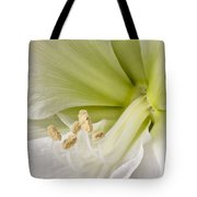 Amaryllis Tote Bag by Adam Romanowicz