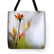 Amber Glow Tote Bag by Christina Rollo