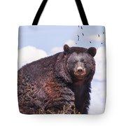 American Black Bear Tote Bag by Janice Rae Pariza