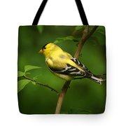 American Gold Finch Tote Bag by Sandy Keeton