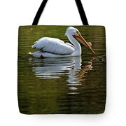 American White Pelican Tote Bag by Elizabeth Winter