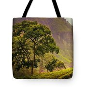 Among The Mountains And Tea Plantations. Nuwara Eliya. Sri Lanka Tote Bag by Jenny Rainbow